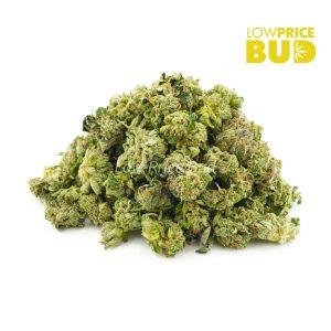 Buy Island Pink Kush (AAAA) – Popcorn Nugs online Canada