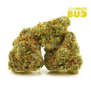 Buy Strawberry Cough (AAAA) online Canada